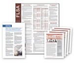 FLSA-Compliance-Poster-Subscription-Service-from-Personnel-Conceepts