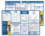 Illinois Labor Law and OSHA Safety Posters Bundle