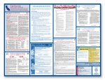 State only Laborlaw Posters-SOP
